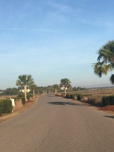 HQ Plantation Drive